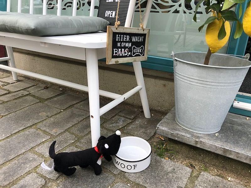 Honden wachten buiten bij Latte Heart Coffee & Cakes in Schiedam
